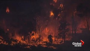 Bushfire threatens homes in Sydney, Australia